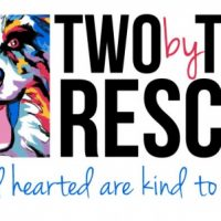 Two by Two Rescue's Barktoberfest RESCHEDULED
