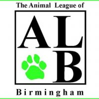 Birmingham's Next Hot Dog Contest