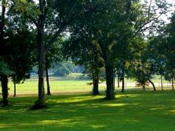 Orr Park